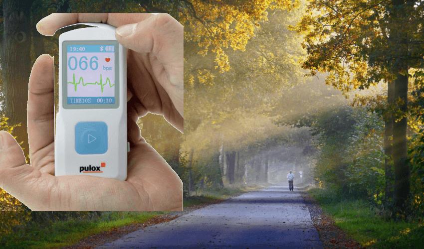 In idyllischer Natur ist ein EKG Gerät das es zu kaufen gibt